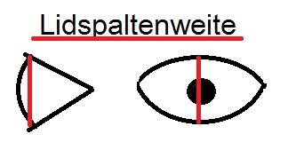 Augen Untersuchung Lidspaltenweite
