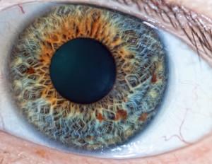 Untersuchung der Pupille