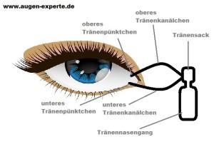 Tränenabfluss am Auge mit Tränenkanälchen